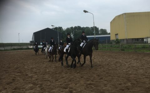 Paardensport-vereniging De Veldruiters